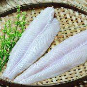 basafish