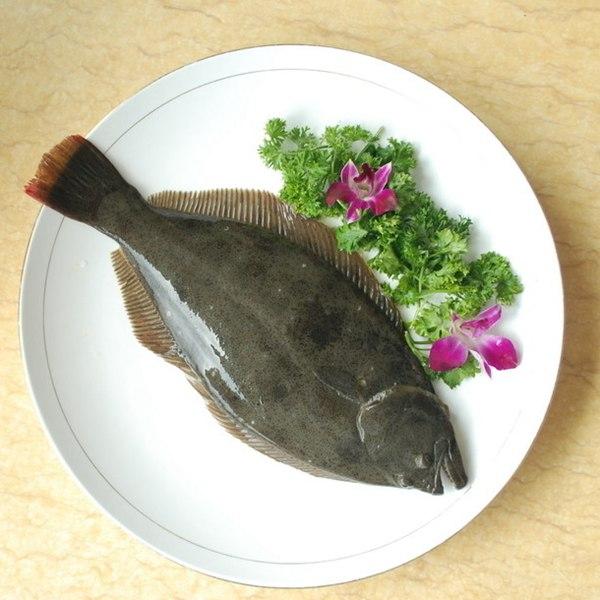 急凍左口魚 1
